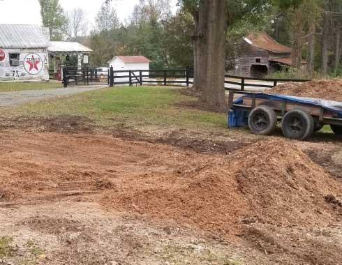 Apex, NC Stump Removal Job After