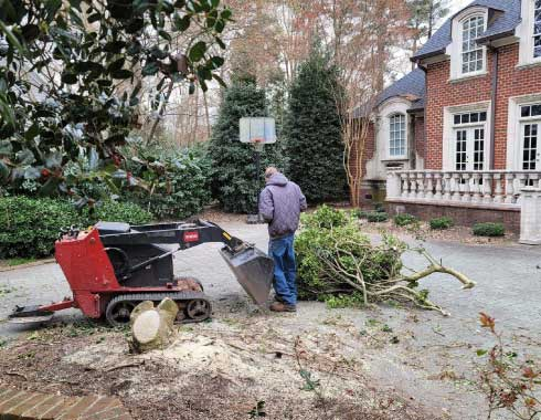 Cary,-NC-Prestonwood-Stump-Grinding-Job-3