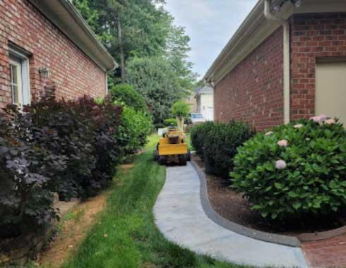 Cary-NC-Stump-Grinding-Job-Equipment-Fitting-in-Back-Yard