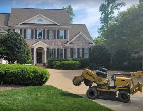 Cary-NC-Stump-Grinding-Job-Front-Yard-Tree