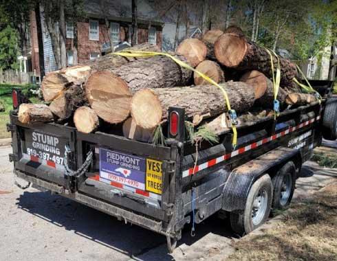 Cary-NC-Tree-Removal-Job-Trailer-Tree-Trunks-Piedmont-Tree-Removal