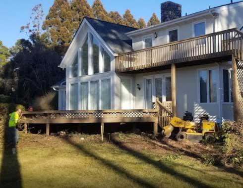 Pittsboro-NC-Stump-Grinding-Job-Under-Deck