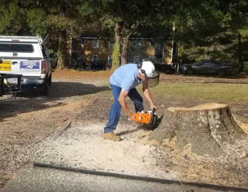 Raleigh-NC-Stump-Grinding-Job-Chainsaw-Piedmont-Stump-Grinding